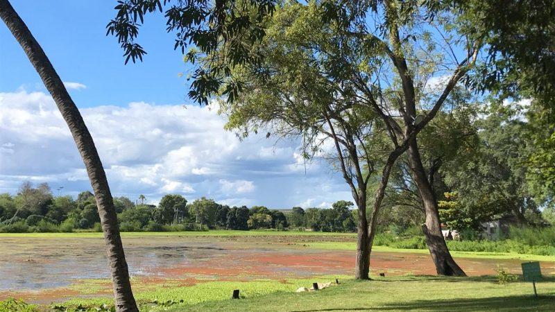 Limpeza do Lago Touro e a Sucuri será realizada nos próximos dias